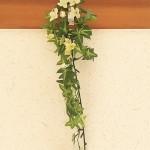100円ショップ雑貨・装飾・インテリアの造花