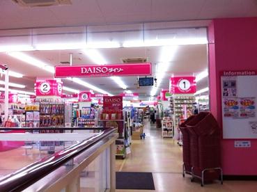 ザ・ダイソー コープひばりヶ丘店に行ってきました